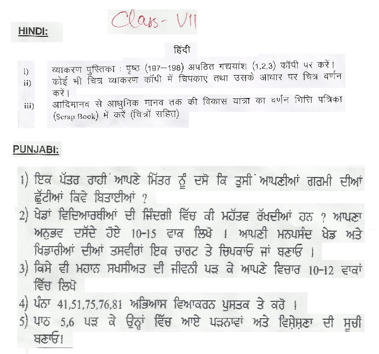 ryan international school ludhiana holiday homework